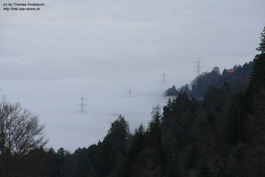 Powerlines in a sea of fog