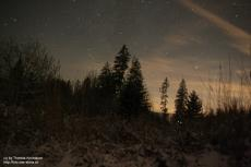 Stars in a winter's night